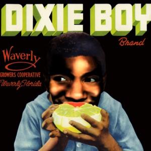 dixie-boy